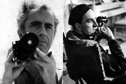 Berman,antonioni