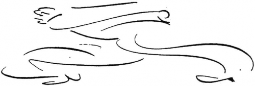 franz kafka, dessins